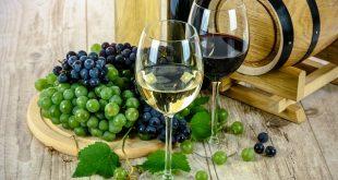 The Vino Club