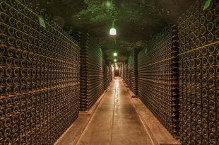 wine-cellar