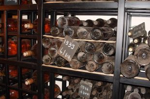 collecting and storing wine
