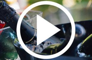 trailblazing wine