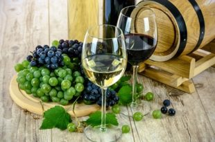 Wine, good or bad for health
